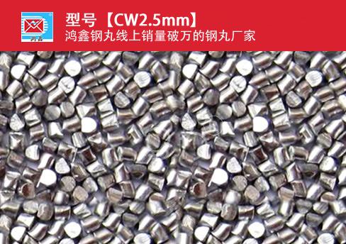 高碳钢丝切丸CW2.5