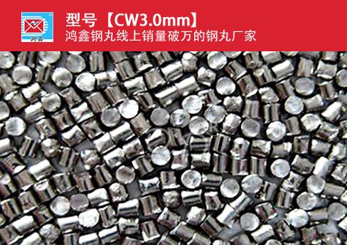 高碳钢丝切丸CW3.0mm