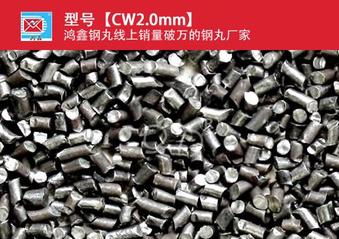高碳钢丝切丸CW2.0mm