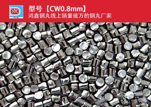 高碳钢丝切丸CW0.8mm
